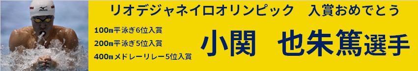 kokise_logo4