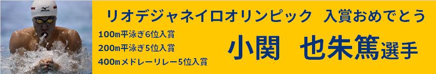 kokise_logo5